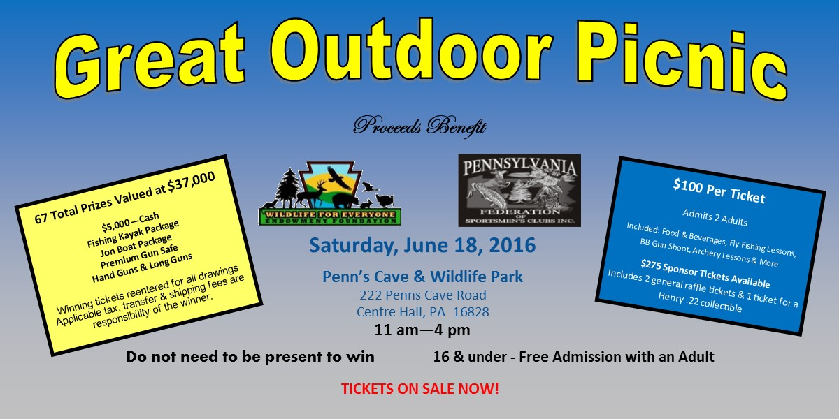 Join us for the 2016 Great Outdoor Picnic