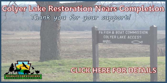 Final Colyer Lake construction begun